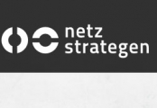 Screenshot www.netzstrategen.com