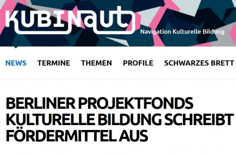 Screenshot www.kubinaut.de