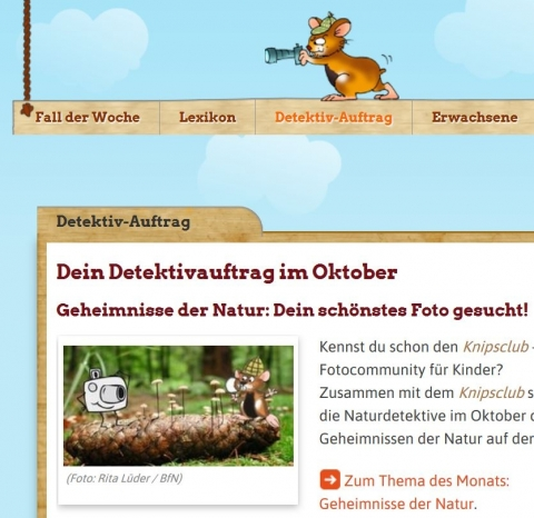 Screenshot naturdetektive.de